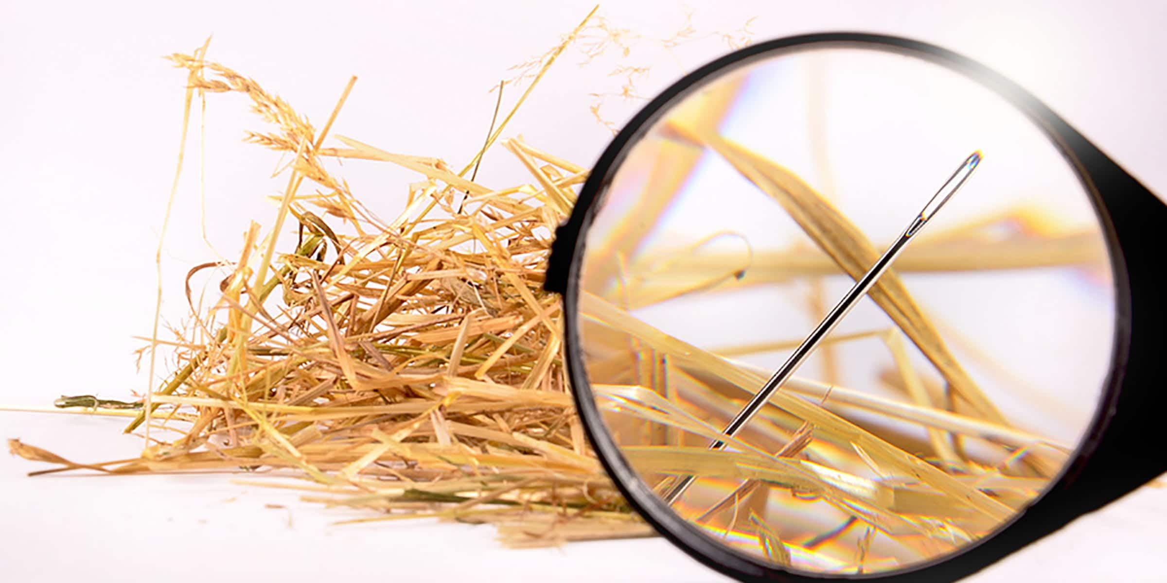 Needle in the Haystack Investing